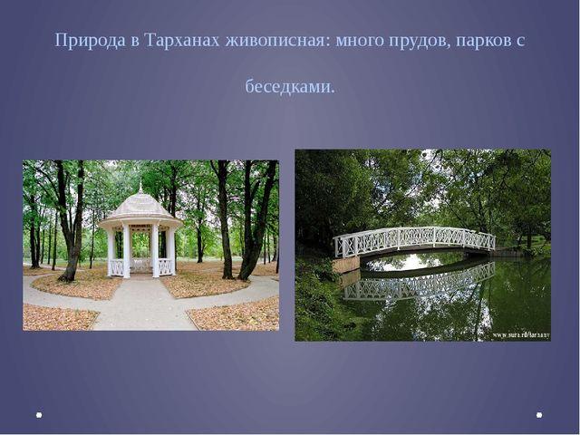 Природа в Тарханах живописная: много прудов, парков с беседками.