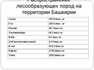 Распространение лесообразующих пород на территории Башкирии Сосна747,0 тыс.