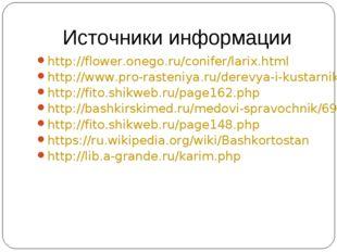 Источники информации http://flower.onego.ru/conifer/larix.html http://www.pro
