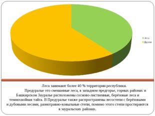 Лесазанимают более 40% территории республики.  Предуральеэтосмешанные