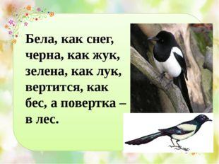 Бела, как снег, черна, как жук, зелена, как лук, вертится, как бес, а повертк