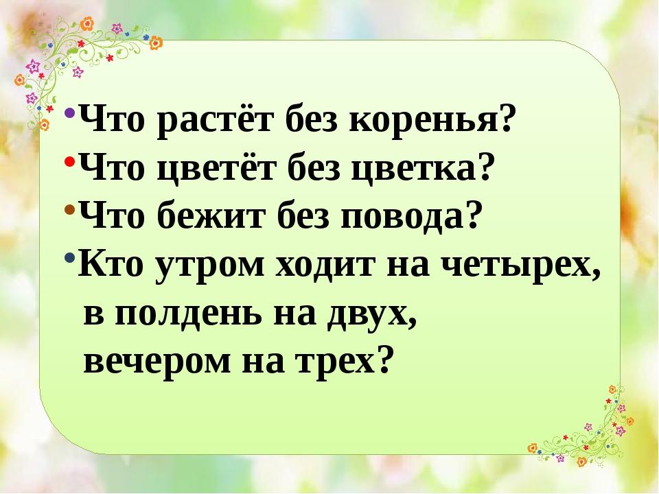 Что растёт без коренья? Что цветёт без цветка? Что бежит без повода? Кто утро...