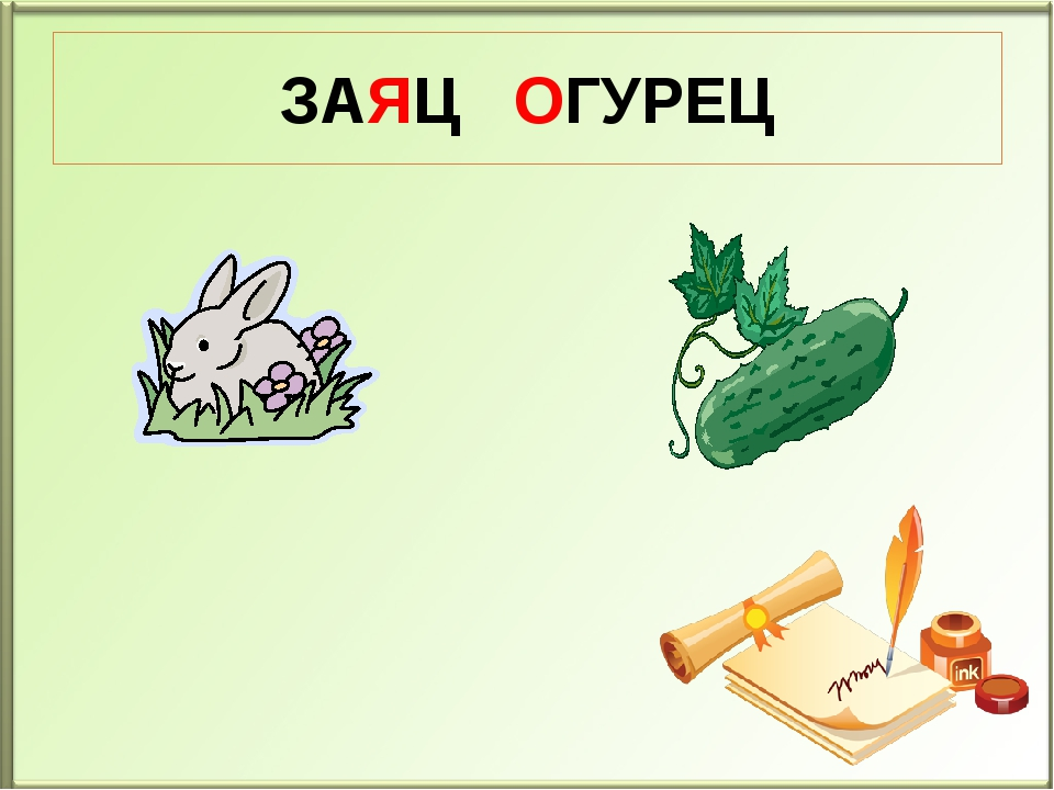 ЗАЯЦ ОГУРЕЦ