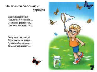 Не ловите бабочек и стрекоз Бабочка цветная Над тобой порхает… Стрекоза резви