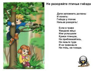 Не разоряйте птичьи гнёзда Дети запомнить должны И понять: Гнёзда у птичек Н