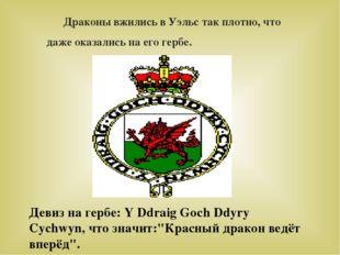 Драконы вжились в Уэльс так плотно, что даже оказались на его гербе. Девиз н