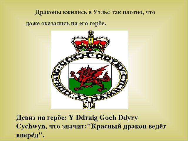 Драконы вжились в Уэльс так плотно, что даже оказались на его гербе. Девиз н...