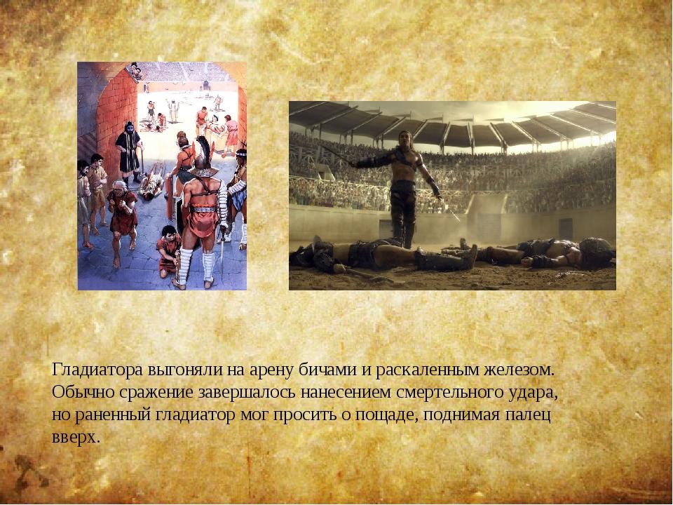 Гладиатора выгоняли на арену бичами и раскаленным железом. Обычно сражение за...