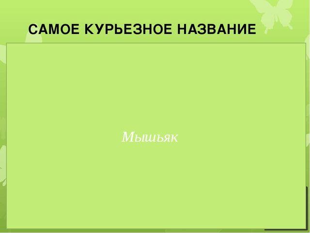 САМОЕ КУРЬЕЗНОЕ НАЗВАНИЕ 1. Сербы и хорваты называют этот элемент «мишомор»,...