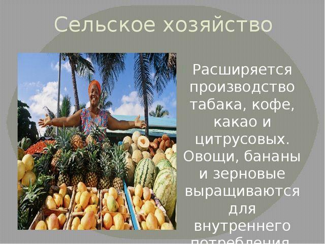 Сельское хозяйство Расширяется производство табака, кофе, какао и цитрусовых....