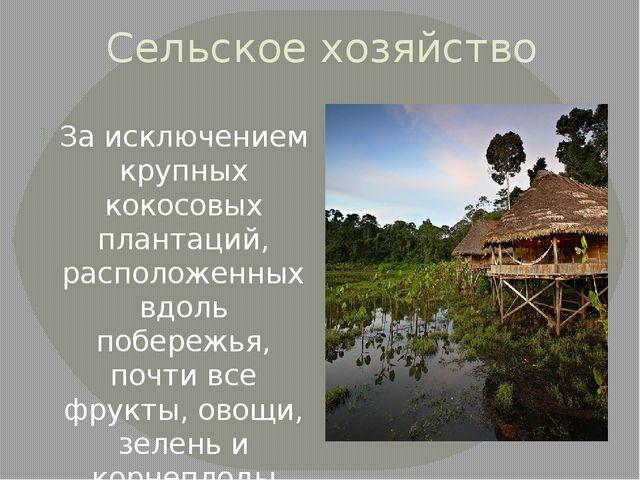 Сельское хозяйство За исключением крупных кокосовых плантаций, расположенных...