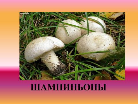 hello_html_4d0ef9e4.png