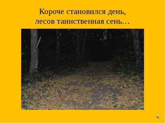 Короче становился день, лесов таинственная сень…