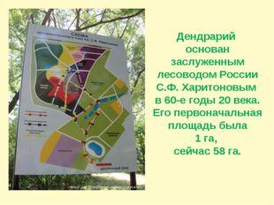 Дендрарий основан заслуженным лесоводом России С.Ф. Харитоновым в 60-е годы 2