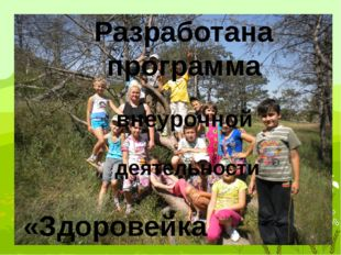 Разработана программа внеурочной деятельности «Здоровейка»
