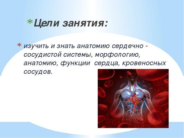 изучить и знать анатомию сердечно - сосудистой системы, морфологию, анатомию,...