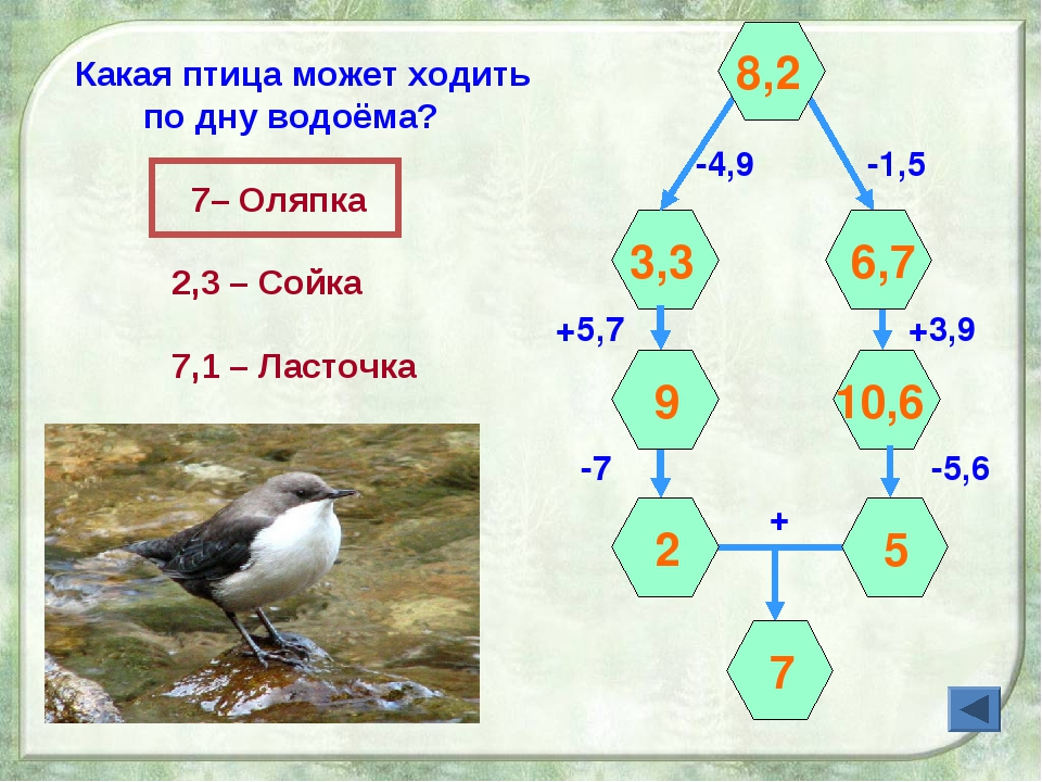 -4,9 +5,7 3,3 -1,5 +3,9 + 8,2 -7 -5,6 6,7 9 10,6 2 5 7 Какая птица может ходи...