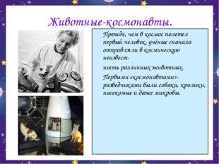 Животные-космонавты. Прежде, чем в космос полетел первый человек, учёные сна