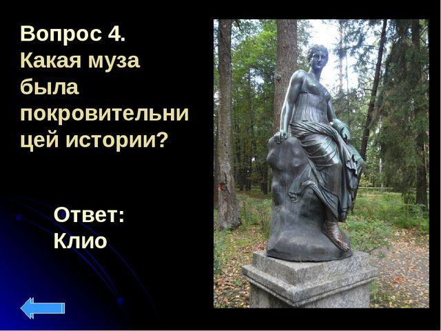 Вопрос 4. Какая муза была покровительницей истории? Ответ: Клио