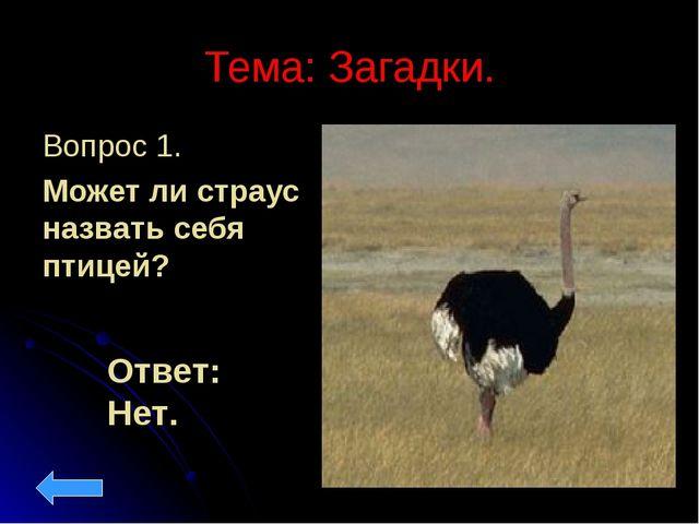 Тема: Загадки. Вопрос 1. Может ли страус назвать себя птицей? Ответ: Нет.