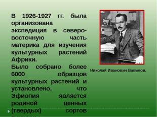 В 1926-1927 гг. была организована экспедиция в северо-восточную часть материк
