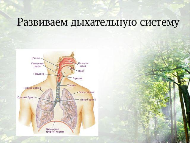 Развиваем дыхательную систему