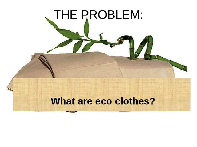 THE PROBLEM: What are eco clothes?