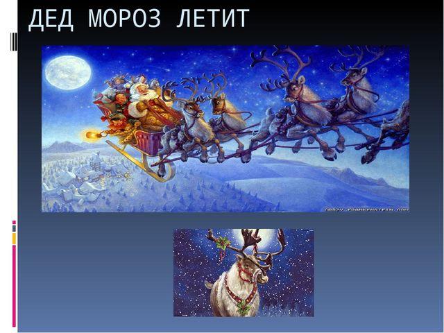 ДЕД МОРОЗ ЛЕТИТ