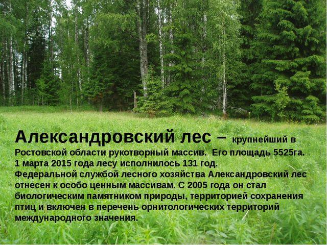 Александровский лес – крупнейший в Ростовской области рукотворный массив. Его...