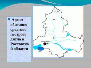 Ареал обитания среднего пестрого дятла в Ростовской области