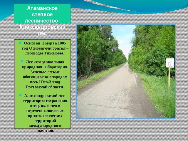 Атаманское степное лесничество- Александровский лес Основан 1 марта 1885 год...