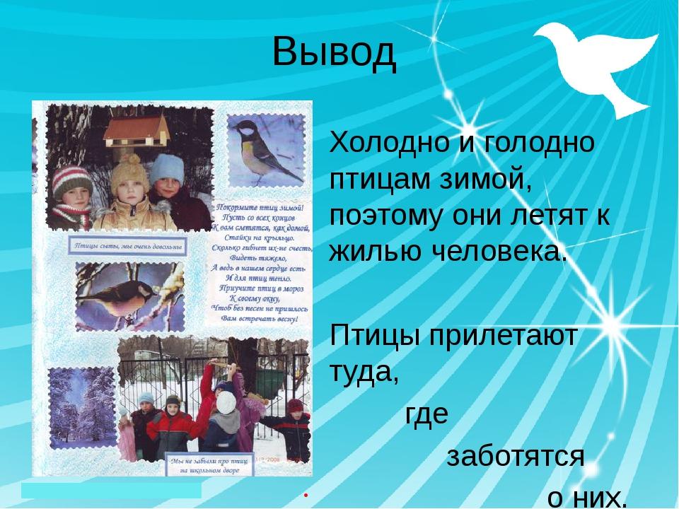 Вывод Холодно и голодно птицам зимой, поэтому они летят к жилью человека. Пти...
