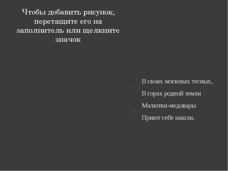 В своих могилках тесных, В горах родной земли Малютки-медовары Приют себе наш...