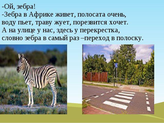 -Ой, зебра! -Зебра в Африке живет, полосата очень, воду пьет, траву жует, пор...