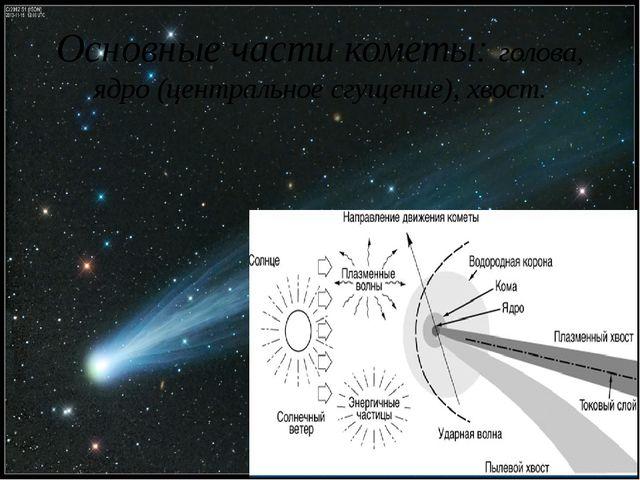 Основные части кометы: голова, ядро (центральное сгущение), хвост.