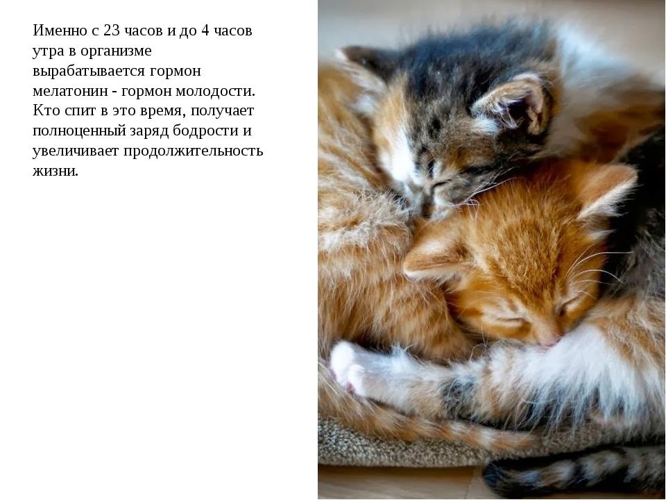 Именно с 23 часов и до 4 часов утра в организме вырабатывается гормон мелатон...