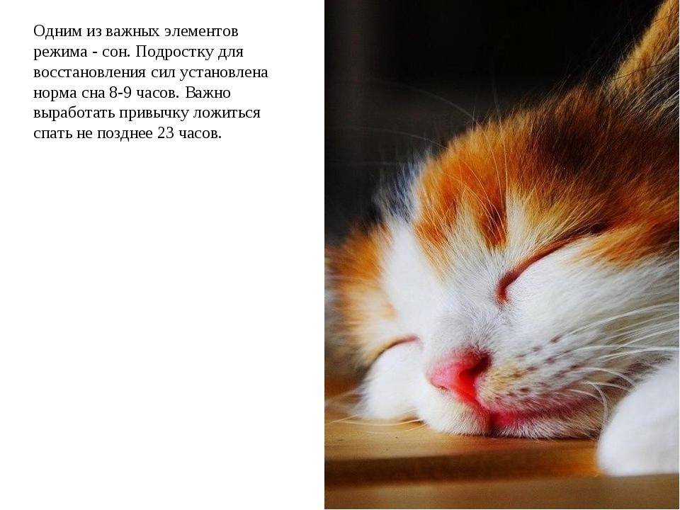 Одним из важных элементов режима - сон. Подростку для восстановления сил уста...