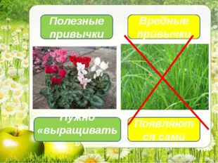 Полезные привычки Вредные привычки Появляются сами Нужно «выращивать»