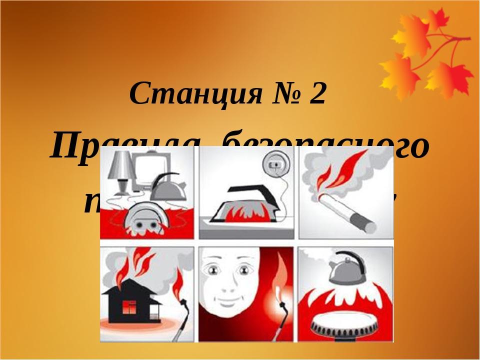 Станция № 2 Правила безопасного поведения в быту