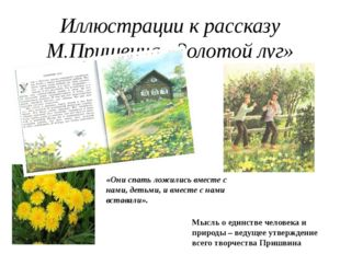 Иллюстрации к рассказу М.Пришвина «Золотой луг» «Они спать ложились вместе с