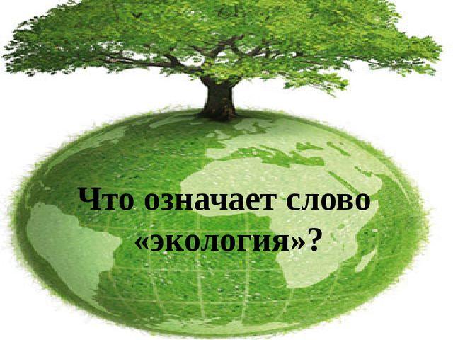 Что означает слово «экология»?