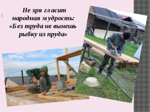 Не зря гласит народная мудрость: «Без труда не вынешь рыбку из пруда»