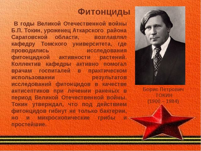 Фитонциды Борис Петрович ТОКИН (1900 – 1984) В годы Великой Отечественной вой...