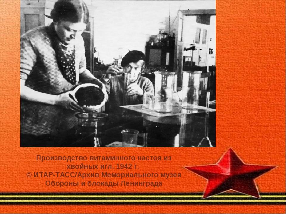 Производство витаминного настоя из хвойных игл. 1942 г. © ИТАР-ТАСС/Архив Мем...