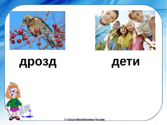 дрозд дети ©Ольга Михайловна Носова
