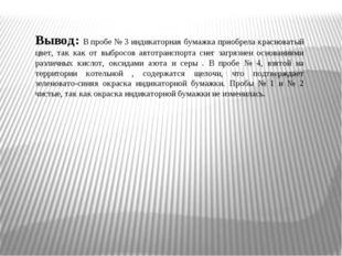 Вывод: В пробе № 3 индикаторная бумажка приобрела красноватый цвет, так как о