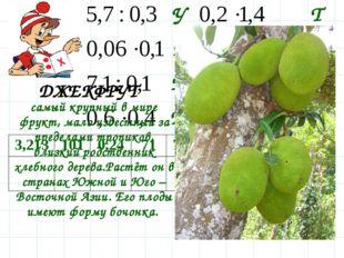 Д Р Т Е У Ф К Ж самый крупный в мире фрукт, мало известный за пределами тропи