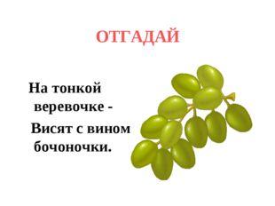 ОТГАДАЙ   На тонкой веревочке - Висят с вином бочоночки.