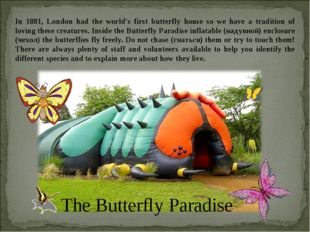 In 1881, London had the world's first butterfly house so we have a tradition