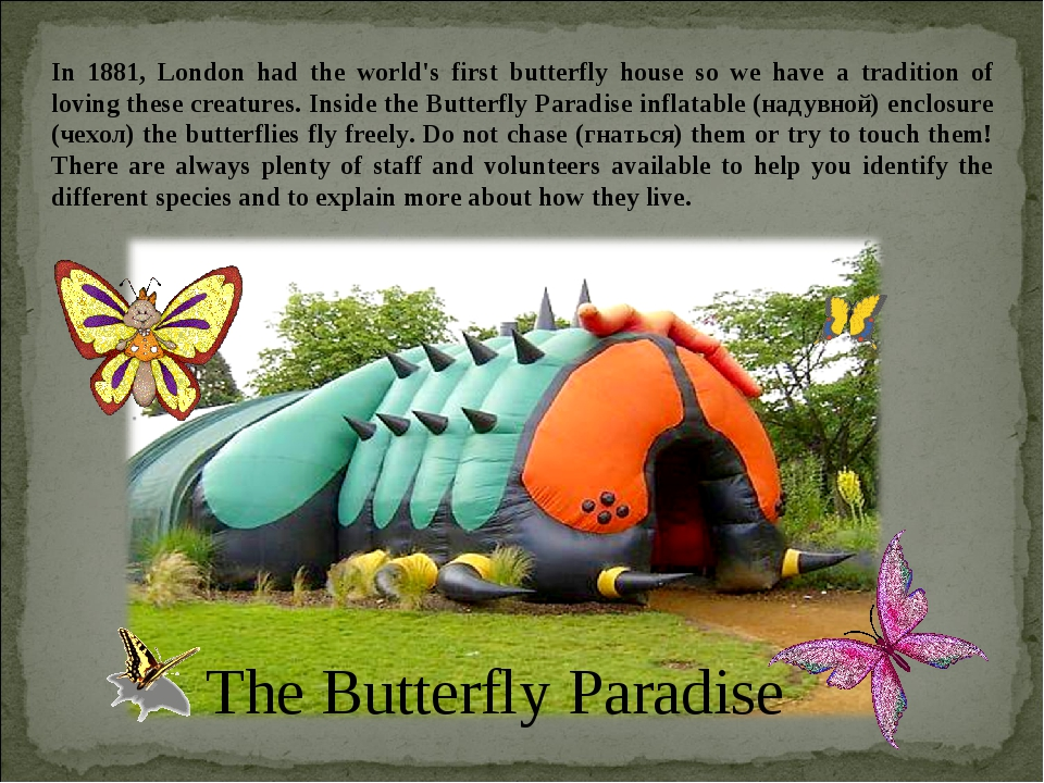 In 1881, London had the world's first butterfly house so we have a tradition...